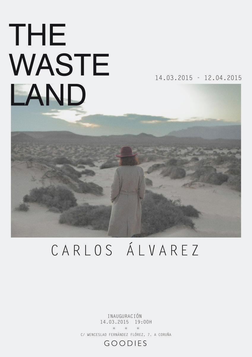 _POSTER_THE_WASTE_LAND_CARLOS_ALVAREZ_002